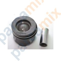 LODGY Piston, Segman